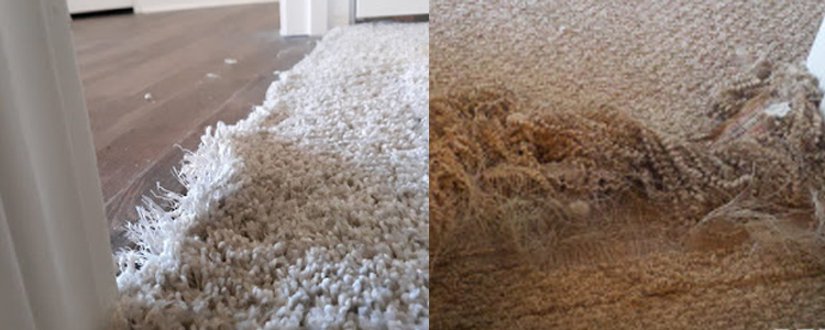 Best Carpet Repair Gawler